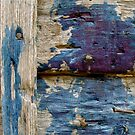 summer blue  by anisja