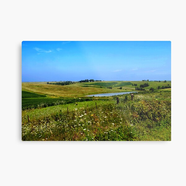 Iowa Farmland on a Summer Afternoon Metal Print