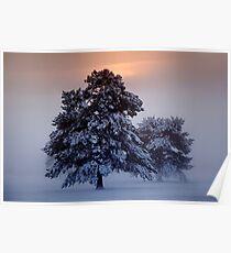 Ashdown Forrest Snow Scene Poster