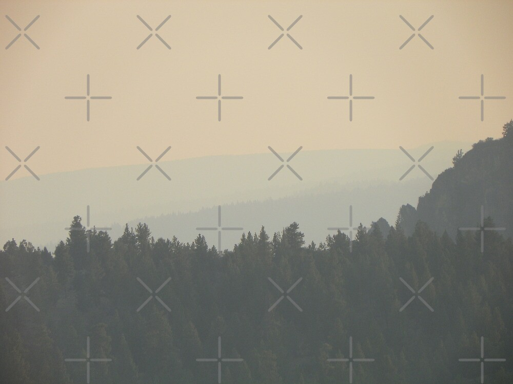 Smoke From a Distant Fire by Betty  Town Duncan