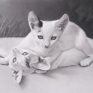 Playful Kittens by LeftHandPrints