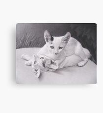 Playful Kittens Canvas Print