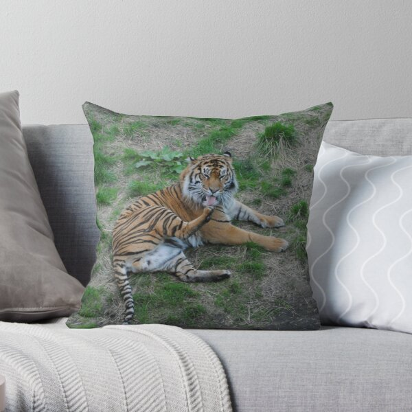 A Sumatran tiger  Throw Pillow