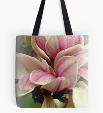 Crossing Over.... Tote Bag