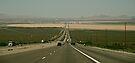 Vegas ahead.....yeah baby!  by Helen Vercoe
