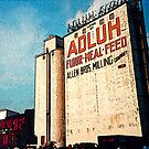 Adluh Flour in the Congaree Vista by Larry Oates