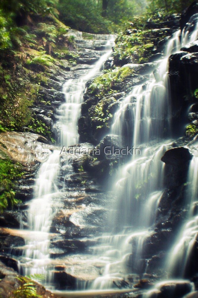 ~ the stillness of nature ~ by Adriana Glackin