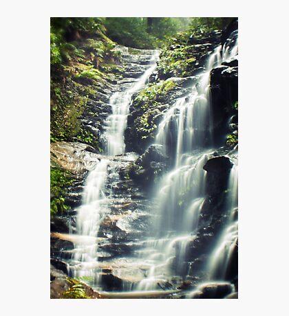 ~ the stillness of nature ~ Photographic Print