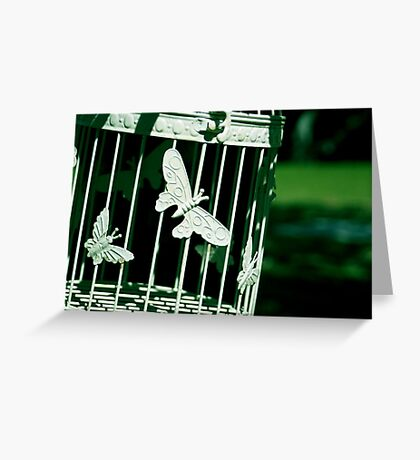 Birdcage Greeting Card