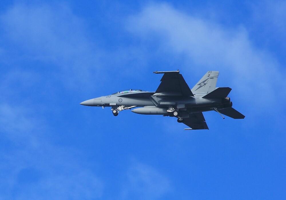 F/A 18F Super Hornet by Tim Harper