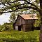 Barns and Country Shots (iPad/Phone Cases))