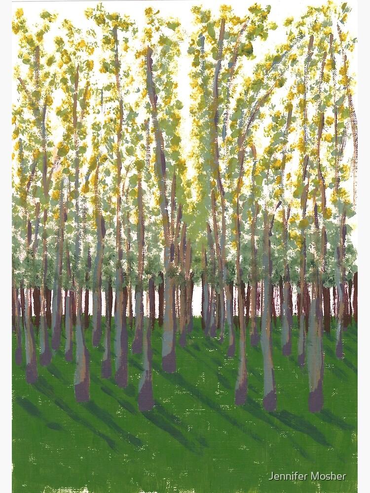 Birch Grove by JenMosh