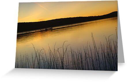 Sunset- Deer Lake, Boyne City, Michigan by Melissa Delaney