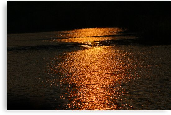 Sunset On Golden Pond  by Mechelep