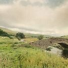 Summer  In Mallerstang by patrixpix