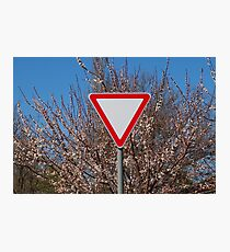 Traffic sign Photographic Print