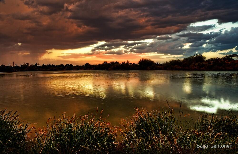 Afterglow by Saija  Lehtonen