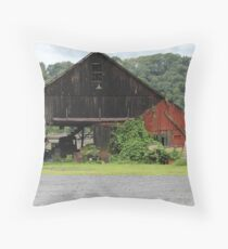 Barn on River Road-Erwina, PA Throw Pillow