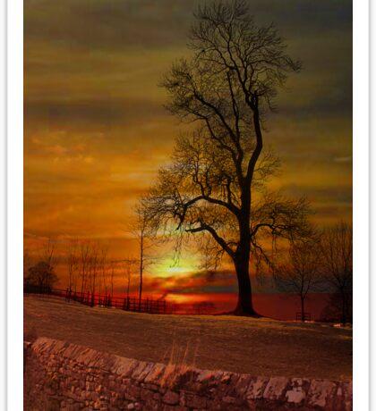 Sunset in Downham . Sticker