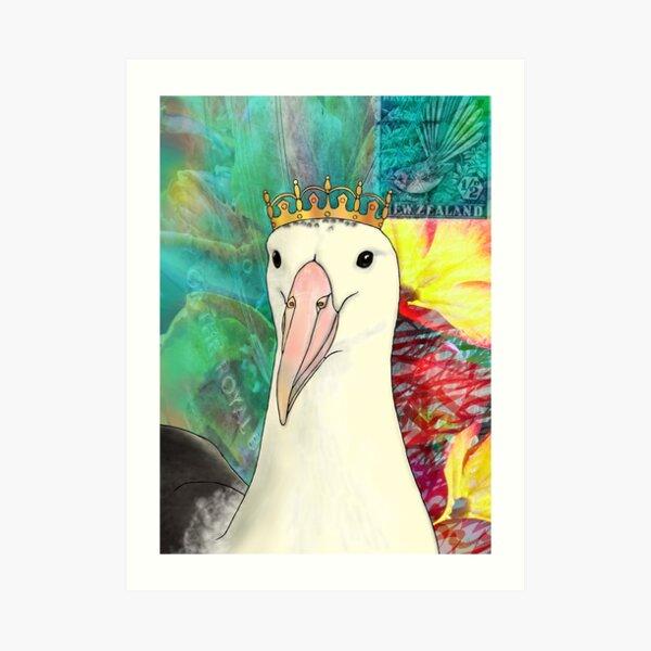 Northern Royal Albatross Art Print