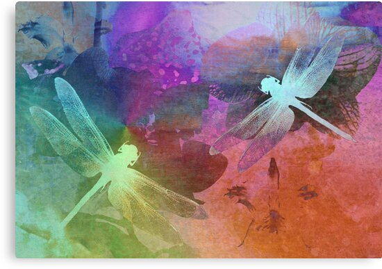 Amazing Dragonflies. by Vitta
