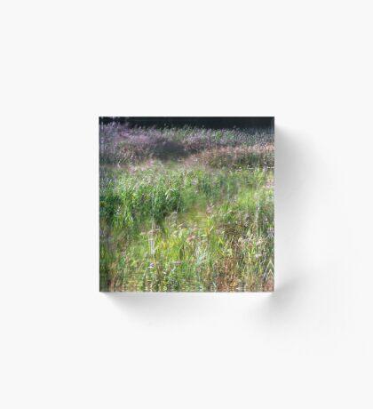 Swirling Grasses Acrylic Block