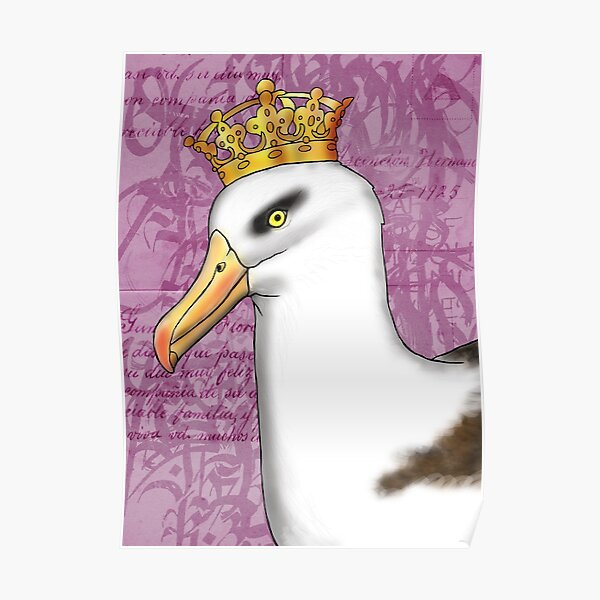 Campbell Albatross Poster