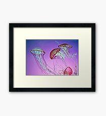 Dance of the Jellyfish Framed Print