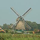 Working Windmill by Robert Abraham