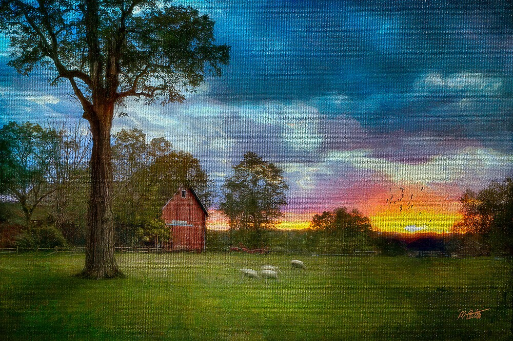 Sunset Over The Farm 2 by Michael  Petrizzo