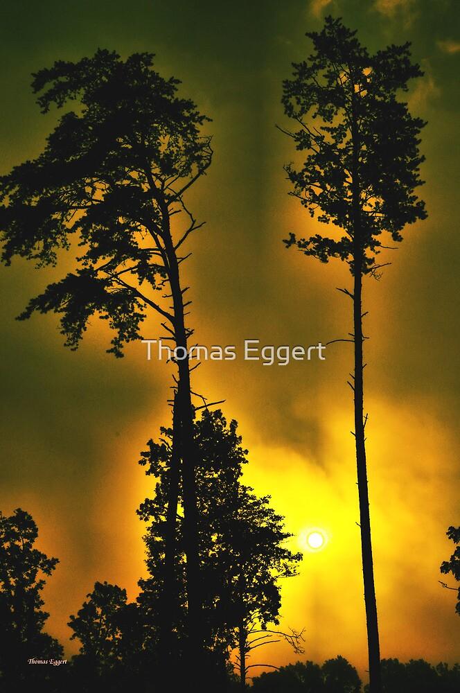 Fire Storm by Thomas Eggert