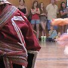 Native American dancers: Seneca Fall Festival D1 by Ray Vaughan