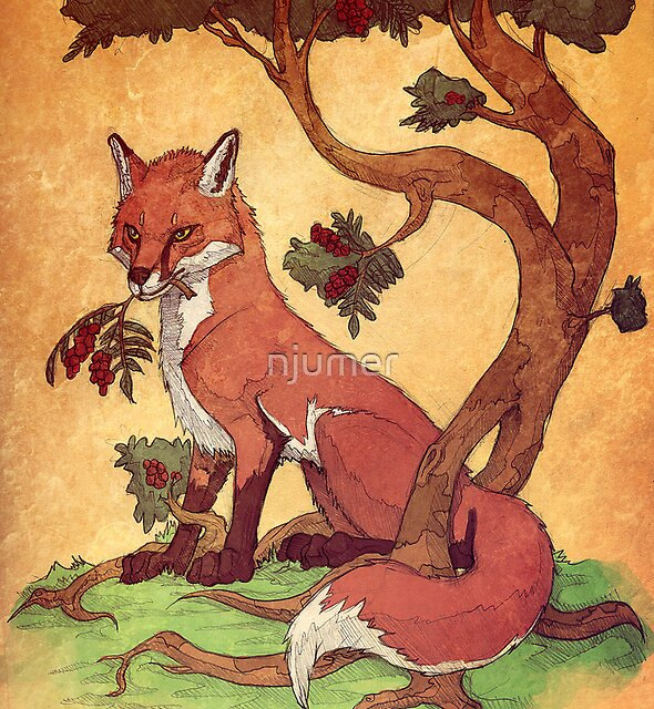Commission: Red Fox by njumer