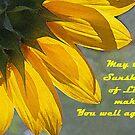 Sunflower Get Well Card by Susan Blevins