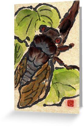 Cicada by dosankodebbie