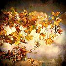 As Autumn leaves by Alan Mattison