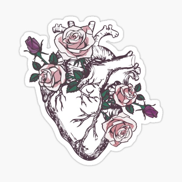 Anatomical Heart Floral Heart Anatomy and Flowers Cute Roses Sticker