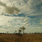 Big Queensland sky by diversedesign