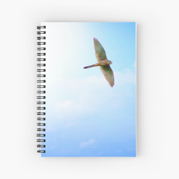 Kestrel in flight Spiral Notebook