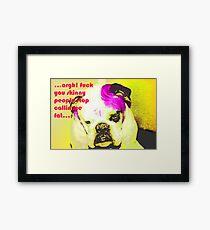 Mad dog Framed Print