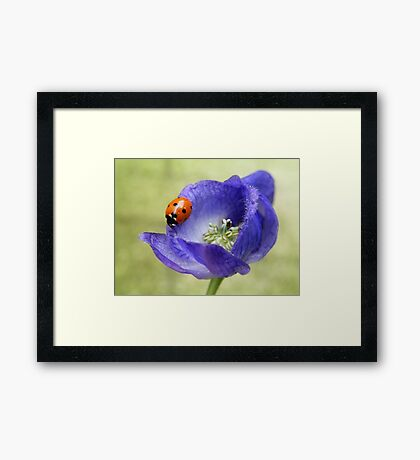 """""""The queen of poisons""""  Framed Print"""