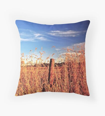 Super Colors Throw Pillow