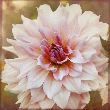 Pretty in Pink by LynnStarner
