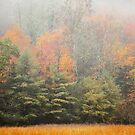 Cataloochee Valley Colors by Gary L   Suddath
