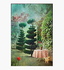 Topiary Trees Photographic Print