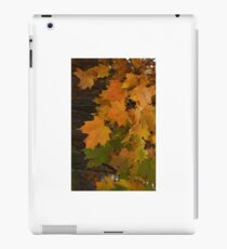 Fall Leaves iPhone case iPad Case/Skin