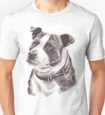 Staffordshire Bull Terrier in Pencil T-Shirt