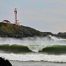 September Waves by Debbie  Roberts