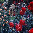City Park—Launceston, Tasmania by BRogers