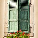 Beautiful Window 1 by Jacinthe Brault